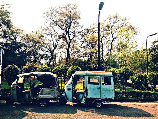 Delhi Rajghat Auto Clouds And Sky Plants 🌱 Trees Pole Streelight Grass Park Greenery Road Shiny Eyeemgood Picoftheday Likesforlikes Photography