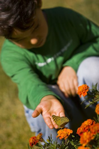 Boy looking at butterfly pollinating on orange flowers