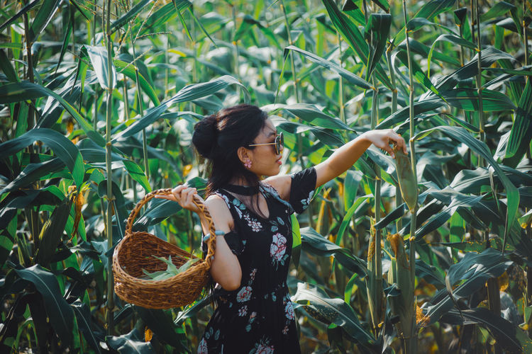 Full length of woman standing by plants in field