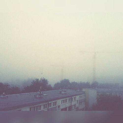 Dzisiaj Wrocław tonie we mgle o poranku :3 Igerspoland Igerswroclaw Fog Citylife Cityscape Instacity Foggymorning Fejwryt Nicniewidać