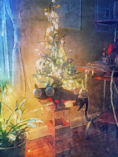 Christmas cat. MobileMart NEM Still Life NEM Mood NEM Culture NEM GoodKarma NEM Toys NEM Painterly Mob Fiction Dont Be Square EyeEm Best Edits