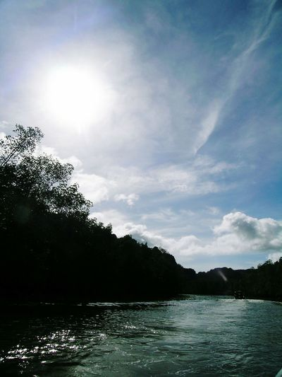River Sunlight ☀
