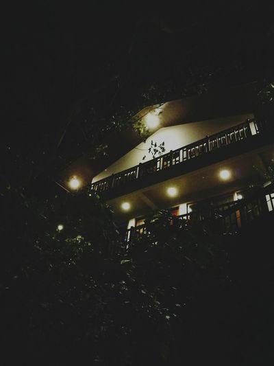 Staycation Aiyanarbeachanddiveresort Vacationhouse Night Illuminated Resort Vacation Time Trees Nighttime Lights