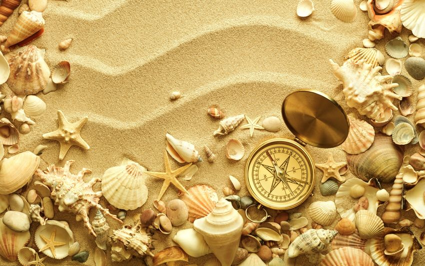 Beach Christmas Close-up Day Gold Colored Large Group Of Objects Nature No People Old-fashioned Sand Sea Sea Life Seashell