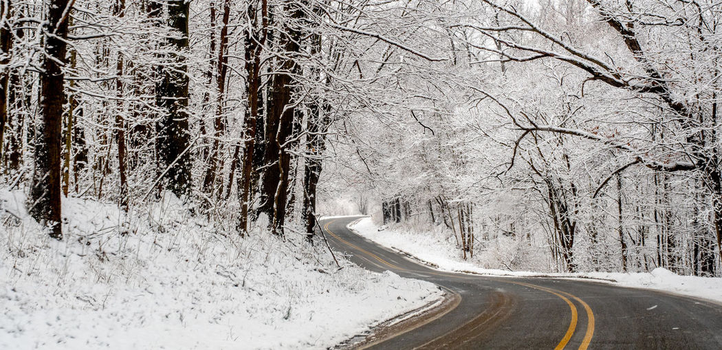 A curving road invites one to drive thought this beautiful snow covered woods in michigan usa