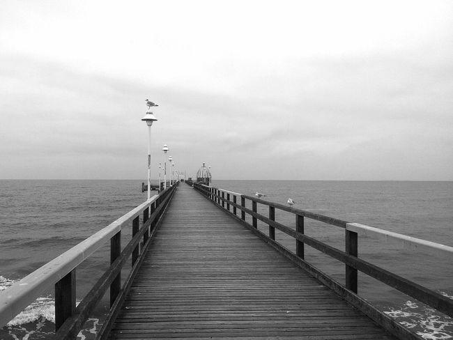 Wintertime Grey In Grey Monochrome Walking Around
