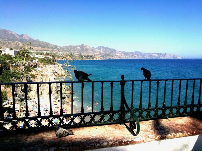 😃👍Hello🌎World Spain♥ Balcon De Europa Nerja Sea 🌅sUNsET