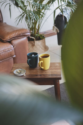 Lounge Interior Leather Couch Relaxing Tranquil Afternoon Afternoon Tea Coffee Break Tea Time Tea Cup Coffee Cup Indoor Plants Relax Close-up Chill Quiet Moments
