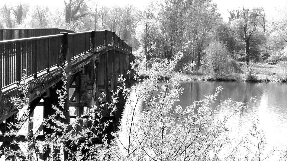 Alsace Black & White Black&white Blackandwhite Bridge Bridge - Man Made Structure Bridges Lac Nature Noir Et Blanc Pont Water EyeEmNewHere Samsung Galaxy J5 Samsung BYOPaper!
