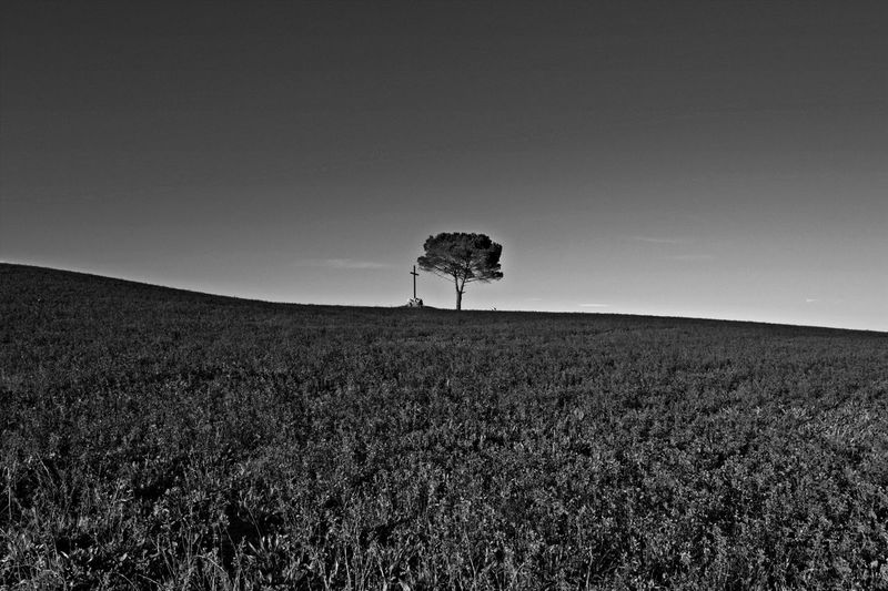 Black & White Black And White Black&white Blackandwhite Blackandwhite Photography Country Countryside Field Landscape Nature Outdoors Solitude Tranquility Tuscany Tuscany Italy Breathing Space Black And White Friday