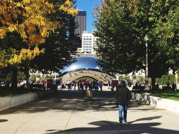 Chicago Architecture Cloud Gate