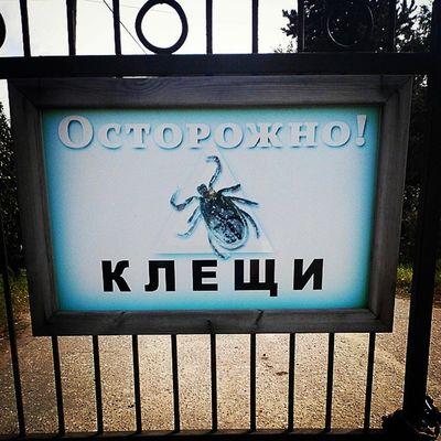 выставкаомск омск Nature