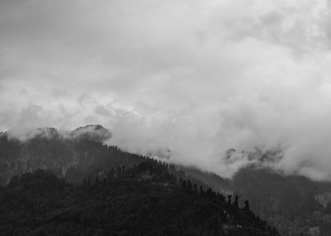 Foggy Mountain in black and white Cloud - Sky Sky Environment Scenics - Nature Beauty In Nature Tranquil Scene Mountain Nature Fog No People Tranquility Non-urban Scene Plant Landscape Tree Outdoors Day Land Forest India Fuji Xt20 Blackandwhite A New Beginning