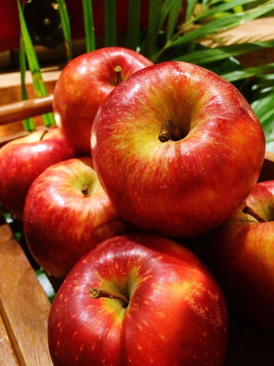 red, fruit, food and drink, apple - fruit, food, freshness, healthy eating, no people, close-up, day, outdoors, nature