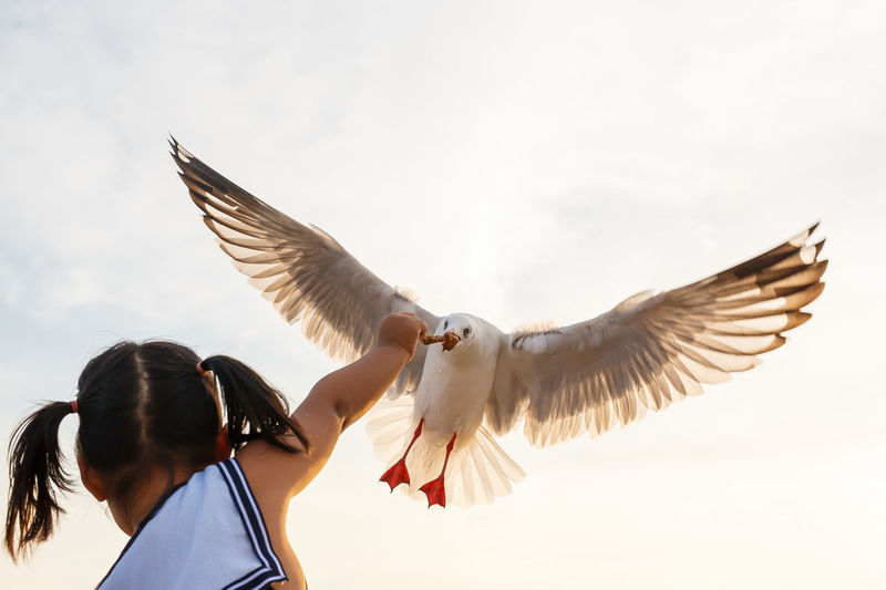 Low angle view of bird flying over girl against sky