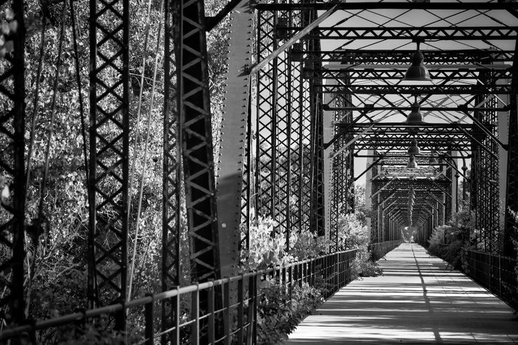 EyeEmNewHere Built Structure No People Architecture Outdoors Tree Day Bridge - Man Made Structure Texas Photographer Freshness Black And White Beautiful Metal Structure Metal Bridge Vintage Look