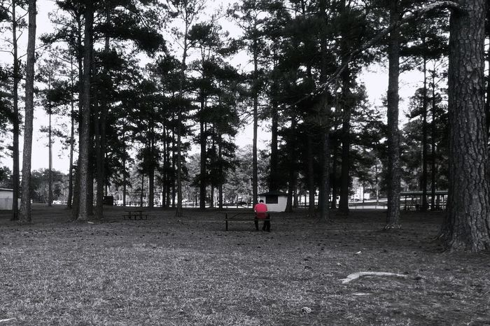 Red Contemplation -- Colorsplash Coloursplash Blackandwhite Black And White Black & White Red Black White And Red One Person Real People Man Tree Trees Woods Forest Growth Rear View Nature One Man Only Sky People Adult Leisure Activity Day Men Outdoors