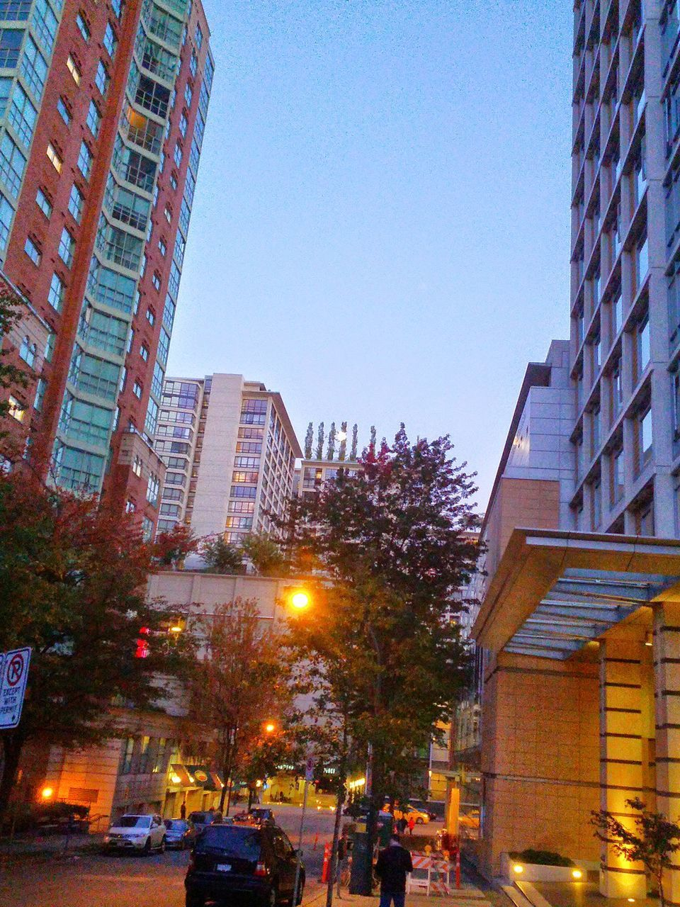 city, architecture, building exterior, modern, skyscraper, illuminated, clear sky, cityscape, no people, sky, tree, outdoors