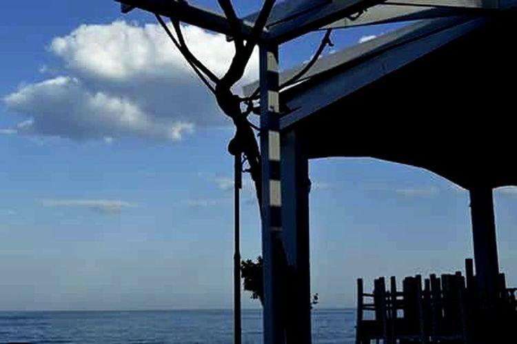 Medusa Seafood Seafood Restaurant Leptokarya Greece Place To Eat
