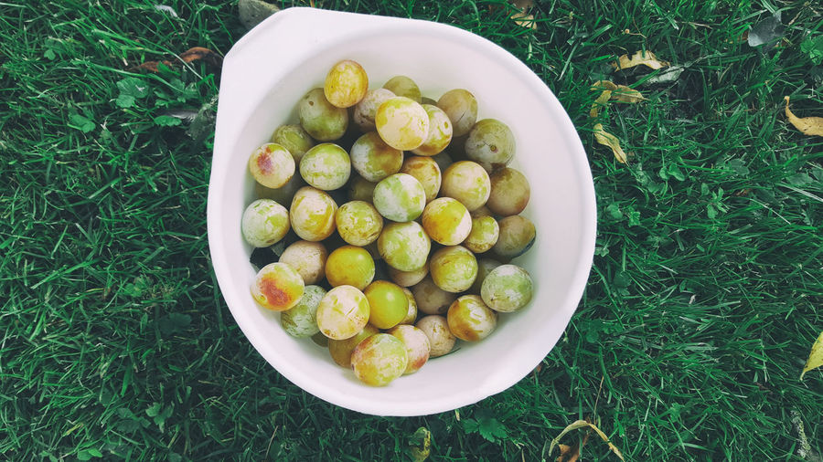 High Angle View Of Grapes In Bowl On Grassy Field