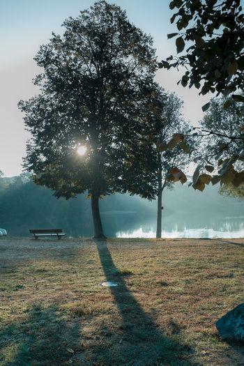 Am See Autumn