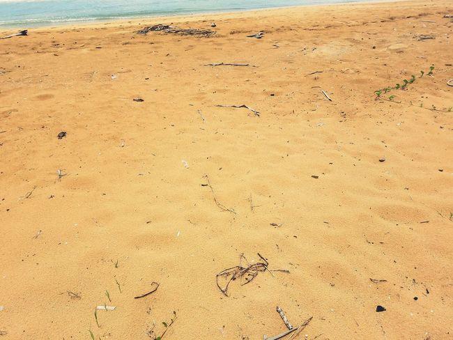 Check This Out Taking Photos Hello World Eyeem Puerto Rico My Island PUERTO RICO Enjoying Life Hi! Follow Me On EyeEm Sand Samsung Galaxy S7 Yellow Sand Water Beach Photography Simple Photography