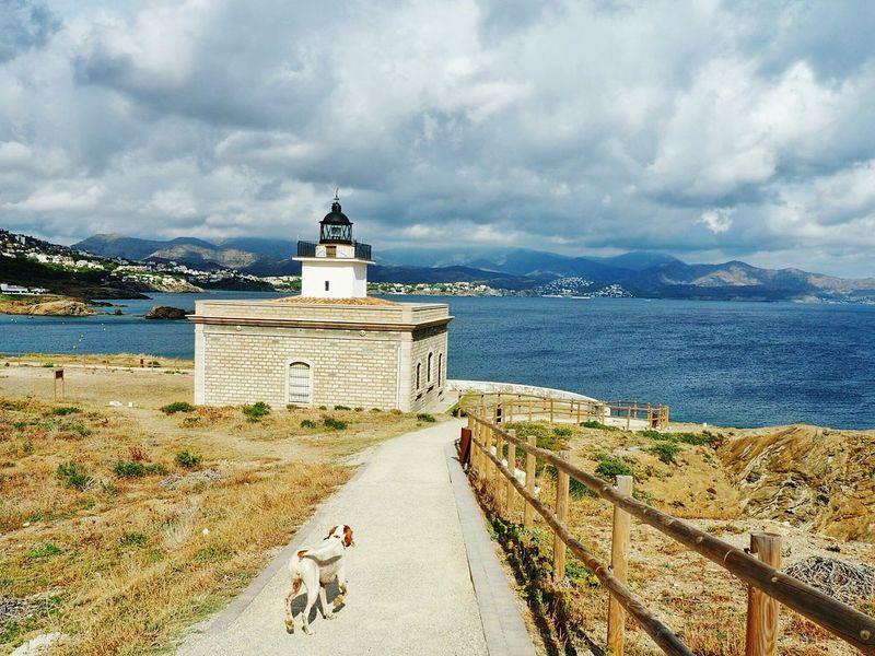 Lighthouse Lighthouse Lighthouse_lovers Dog Clouds EyeEm Best Shots Storm Clouds Landscapes With WhiteWall Photography In Motion Blue Wave Original Experiences in Port De La Selva