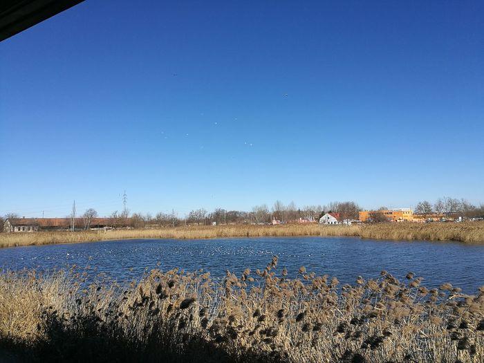 Lake,szeged,plaza