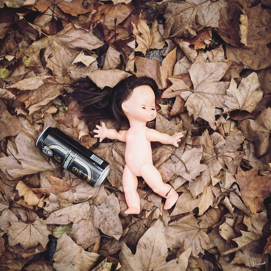 Doll Beer Scary Horror Thriller Autumn Abandoned Abandonned Toy