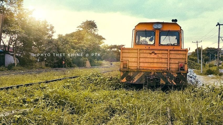 Trainphotography Railway Agriculture Tree Field Combine Harvester Land Vehicle Rural Scene Sky Grass Agricultural Machinery