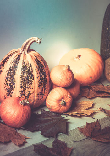 Pumpkin, tinted photo Autumn Close-up Food Freshness Indoors  Ingredient Leaf No People Plant Part Pumpkin Spice Still Life Table Vegetable Wellbeing