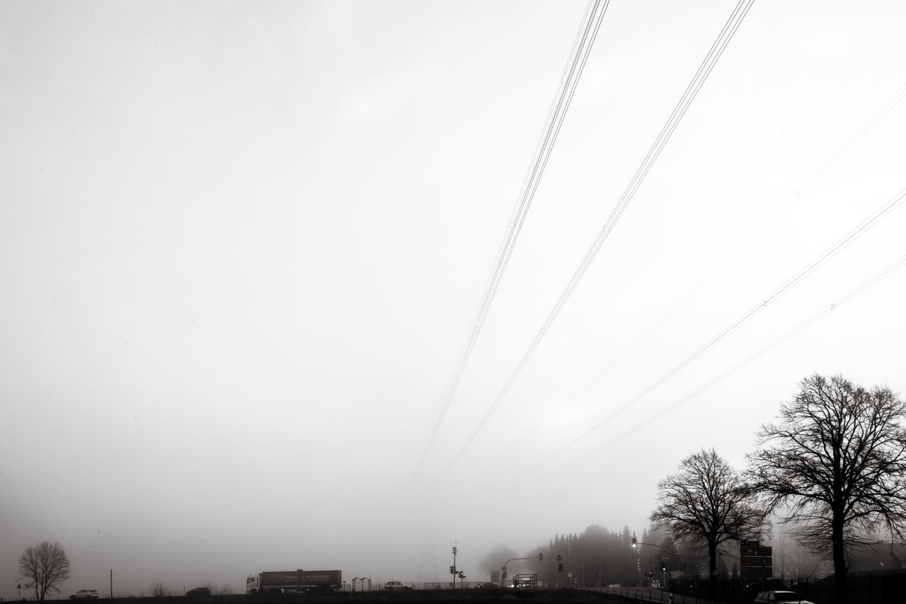 tree, cable, power line, sky, nature, clear sky, no people, outdoors, beauty in nature, electricity pylon, bare tree, scenics, building exterior, day, telephone line