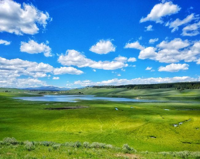 In a valley of the free Yellowstone National Park Cloud - Sky Landscape Sky Nature Green Color Grass Field Beauty In Nature Outdoors No People Scenics Blue Rural Scene Day Mountain Range Mountain Fresh Natureoverload Freedom Free Freelance Scenic