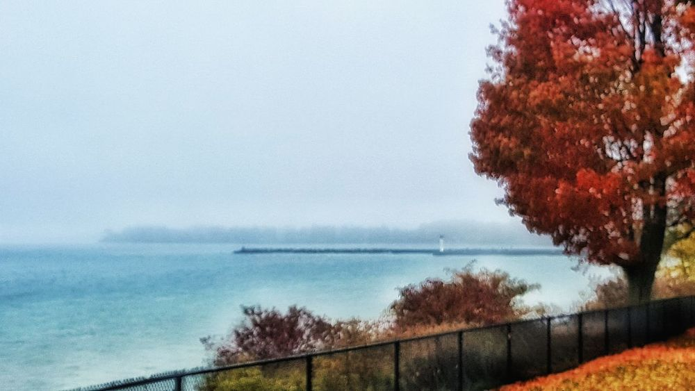 Beach Beauty In Nature Day Fall Beauty Fall Colors Fall Leaves Foggy Haze Horizon Over Water Nature No People Outdoors Water Waterfront Waterfront Park Glamour Glow Lake View Waterfront Trail Park Maple Tree Landscapes