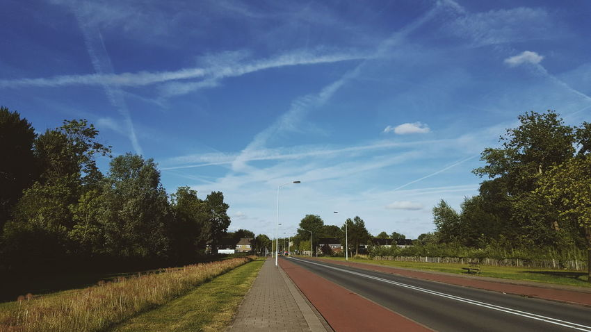 Road Tree Cloud - Sky Sky Nature Road No People Summer Views Summer Amateur Photography Urban Holland Park