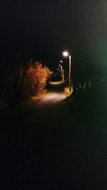Night Road Illuminated The Way Forward Street Light Dark Empty Road Outdoors Narrow Diminishing Perspective Long Tranquility Footpath No People Pedestrian Walkway Non-urban Scene Scenics
