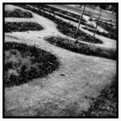 Landscape Blackandwhite Bw_collection Sagaofmytears We all need to choose our paths... All the Twist and Turns and All that comes our way...