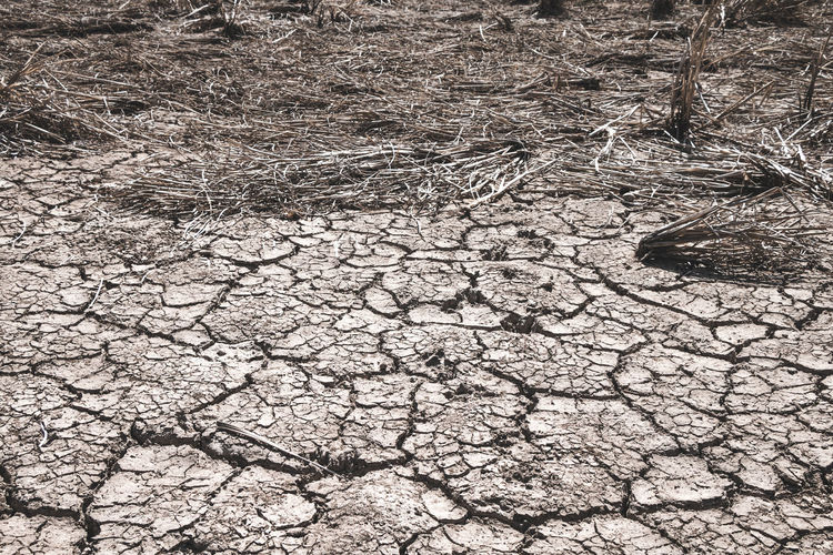 Nature Land Dry Field Climate Arid Climate Textured  Drought Mud Outdoors Dirt Cracked Scenics - Nature Barren Backgrounds