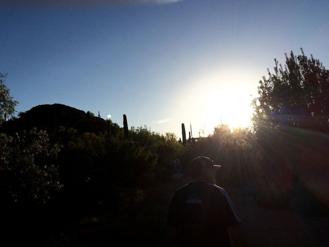 Vacation Desert Botanical Garden EyeEm Best Shots - Nature EyeEm Best Shots - Landscape Landscape_Collection Sunset Cactus