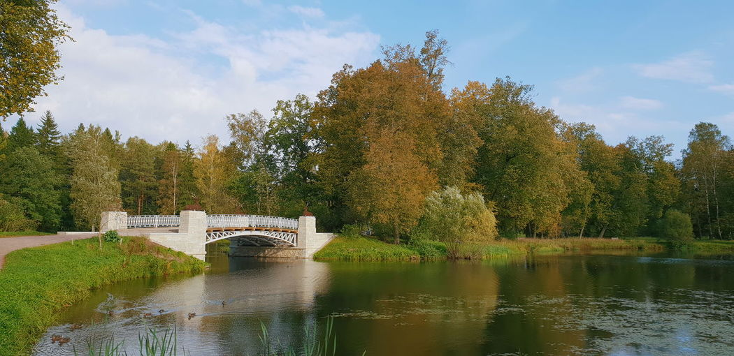 Relax Relaxing Withgalaxy снятонаgalaxy Park Bridge - Man Made Structure Saint Petersburg Санкт-Петербург Outdoors Tree Water Pixelated Watermill Reflection Sky Architecture Cloud - Sky Tranquility Idyllic Non-urban Scene Tranquil Scene Scenics