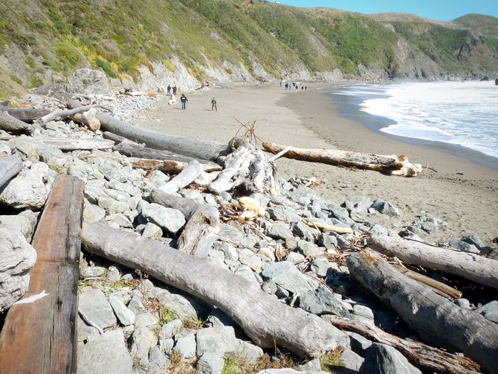 The KIOMI Collection Rocky Coastline Sonoma County Coast Sonoma County California Coast Nature Photography Nature_collection Nature Outdoors Outdoor Photography Beach Rocky Beach Driftwood Logs