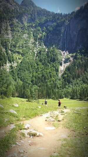 climb to the top 💪👍 zirve çok zor, uzak,taşlı,yorucu... gözüksede asla pes etme Climbing Tırmanış Hedef En Tepesi 💪✌ An Eye For Travel Nature Outdoors Tree Day Beauty In Nature Mountain Scenics
