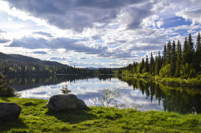 Cloudy blue sky and green forest reflecting on the lake water, behind a big stone