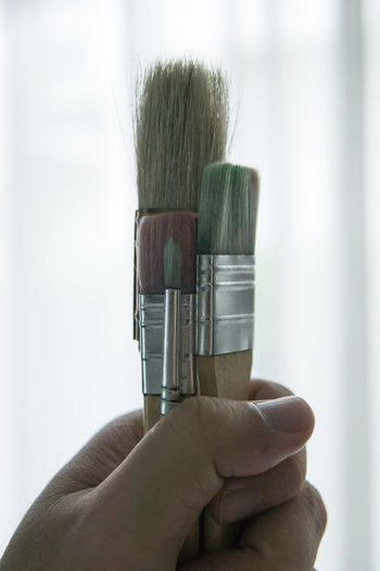 hand hold paint brushes Brushes Close-up Day Holding Human Body Part Human Hand Indoors  One Person Paint Brushes People