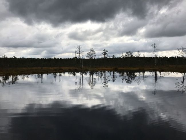 Made With IPhone 7 No Effects No People Autumn Cold Dark Cloud - Sky Sky Reflection Water Tree Plant Beauty In Nature No People Tranquility Scenics - Nature Tranquil Scene Nature Outdoors Lake Waterfront Reflection Lake Day Idyllic Growth