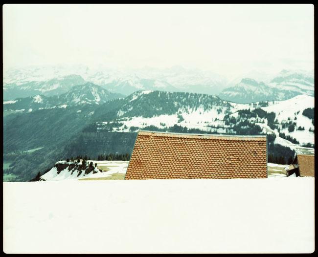 Hiking up Mount Rigi Alps Analogue Photography Climate Change Cross Elevation Film Photography Gipfelkreuz Hiking Lonely Hut Mount Rigi Mountain Nature Outdoors Peak Plaubel Makina 67 Snow Snow And Grass Swiss Alps Switzerland Top Travel Winter Xpro