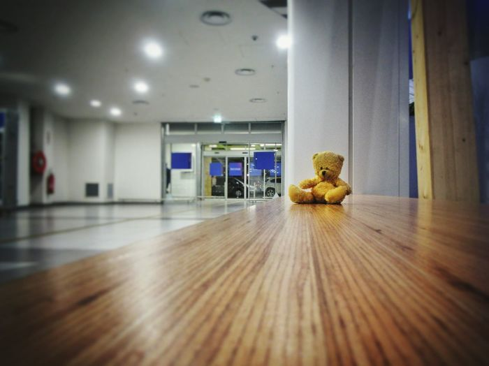 Indoors  Built Structure Architecture Ceiling Illuminated No People Architectural Column Parking Garage Day Teddy Bear Teddy Abandoned Sad & Lonely Sadness Chidren Toys Lonely Loneliness Lumicar