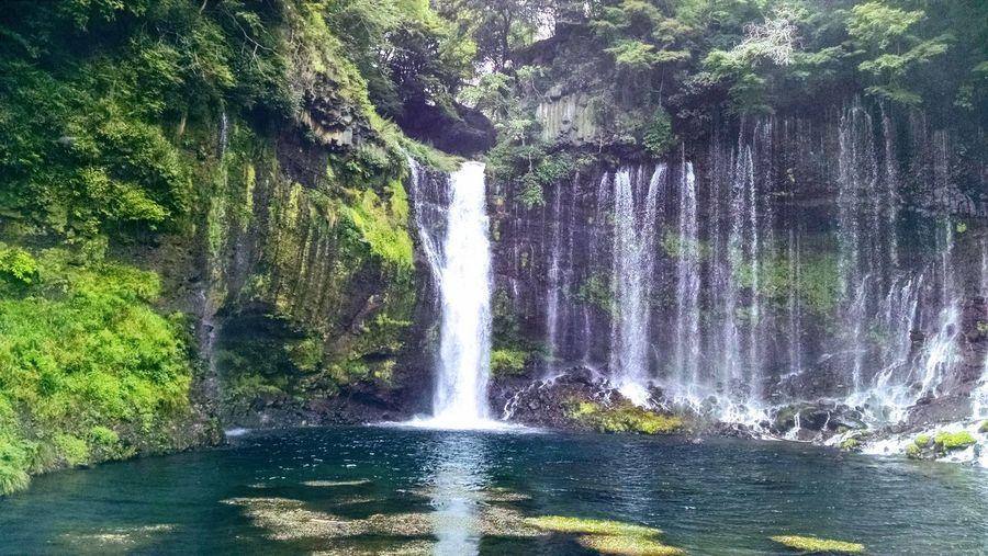 Shiraito Falls in Japan. EyeEmNewHere ASIA Fuji Mountain Japan Mt Fuji Shiraito Falls Water Falls Shizuoka Water Waterfall Waterfall #water #landscape #nature #beautiful Waterfall In Mountain Waterfall_collection Waterfalls Waterfalls💦