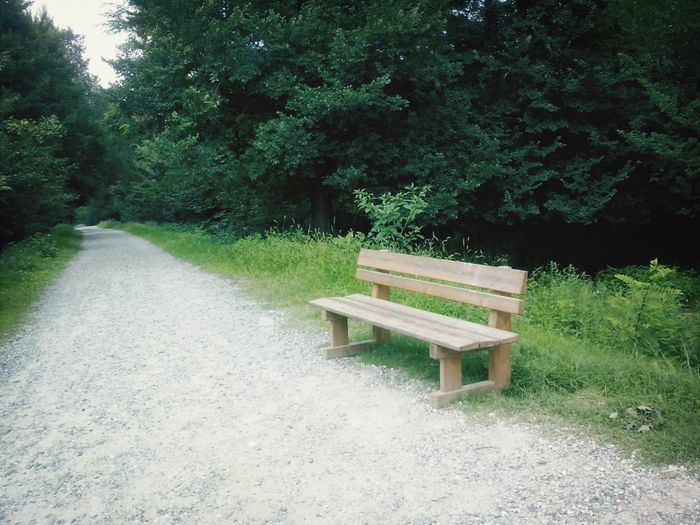 have a seat. Park Green Nature Path
