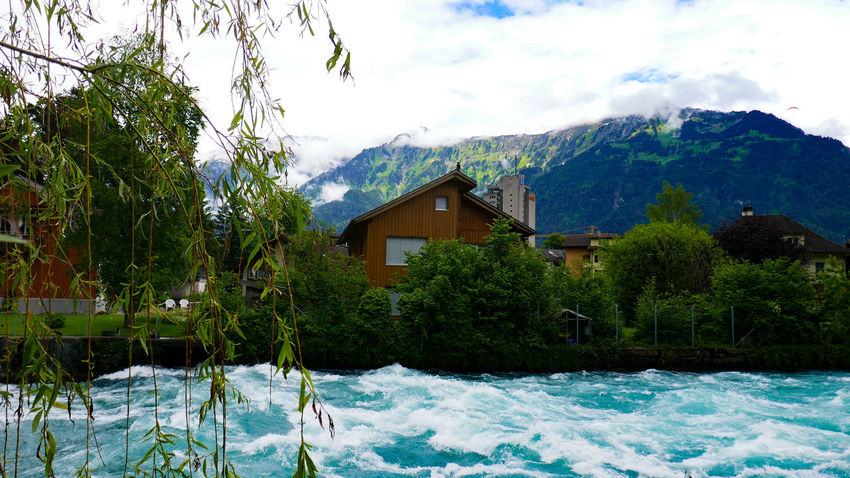 Swiss Glacier Waters...Ice Age Glaciers Melt Tree Built Structure Architecture Sky House Tranquil Scene Scenics Building Exterior Non-urban Scene Cloud - Sky Cloud Nature Beauty In Nature Green Color Tranquility Cottage Mountain Growth Day Outdoors